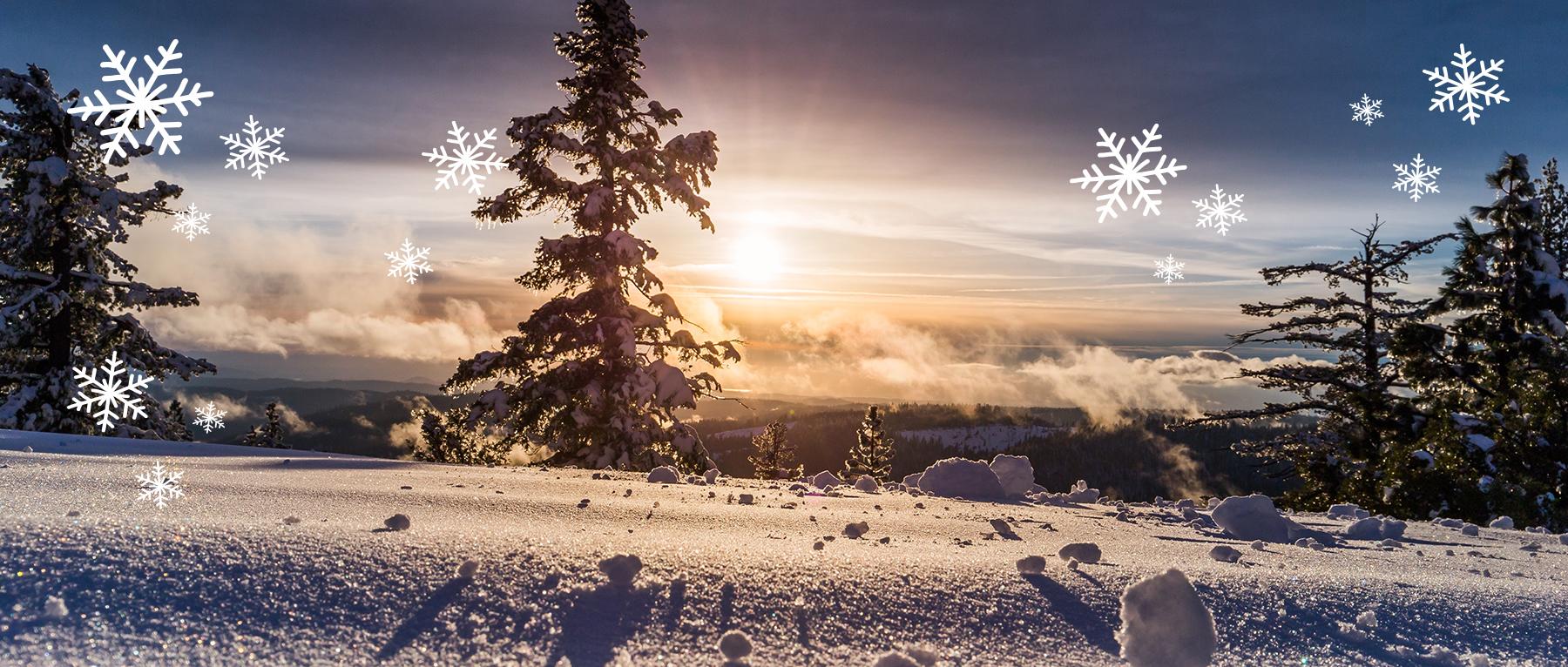 Banner_Winteraktionswochen_Starseite_01.jpg