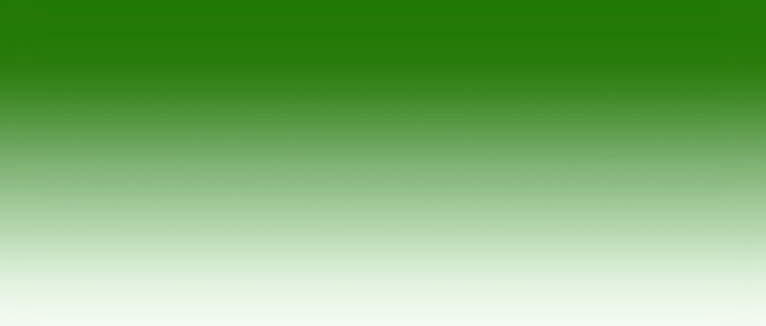 Blumeyer-Headergrafik-4.jpg